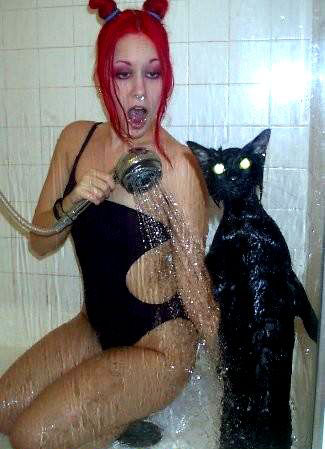 Kitty shower